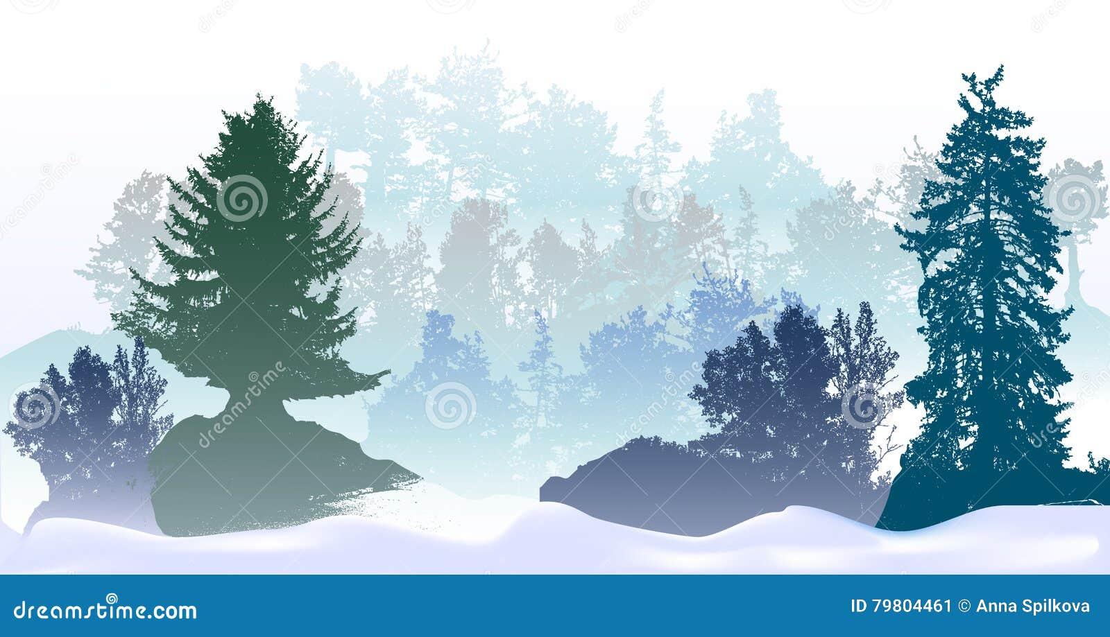 Le paysage panoramique d hiver avec les arbres et la neige neigeux dérive