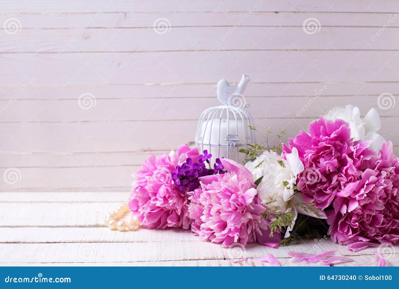 Le peonie bianche e rosa fiorisce sulle plance di legno dipinte bianco
