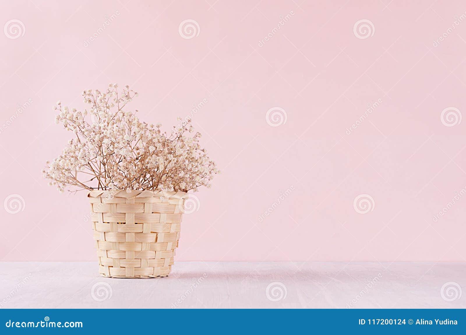 Le petit blanc a séché des fleurs dans le panier en osier beige sur le fond en pastel rose mou Fond doux clair frais