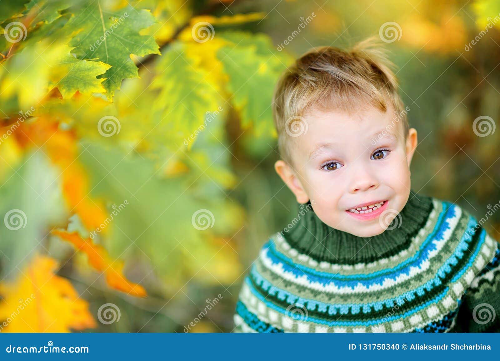 Le petit garçon marche dans le sourire de parc d automne
