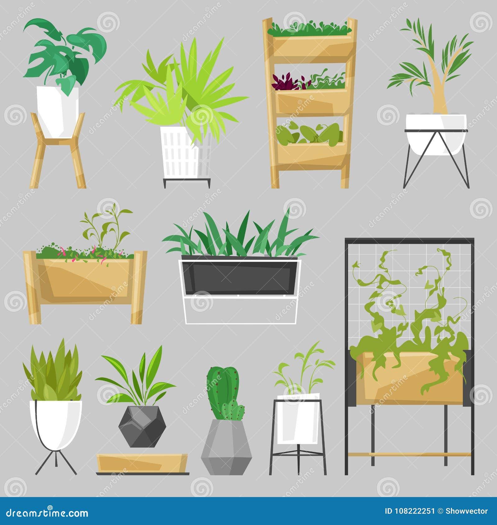 Le piante in vasi da fiori vector l aloe botanico dell interno dei cactus delle piante da appartamento conservate in vaso per la