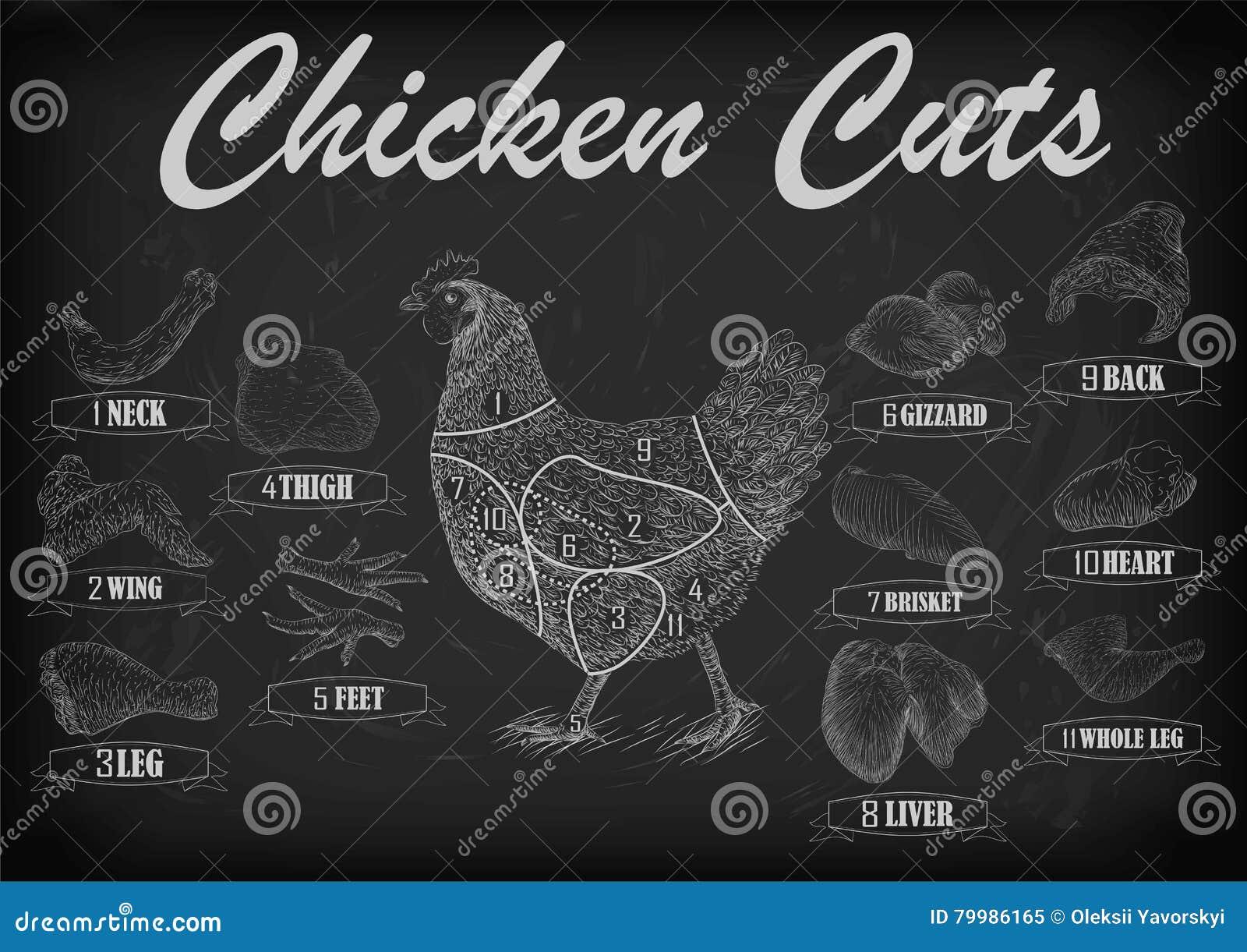 Le plan de viande de coupe de poule de poulet partie l aile de cou de poitrine de carcasse