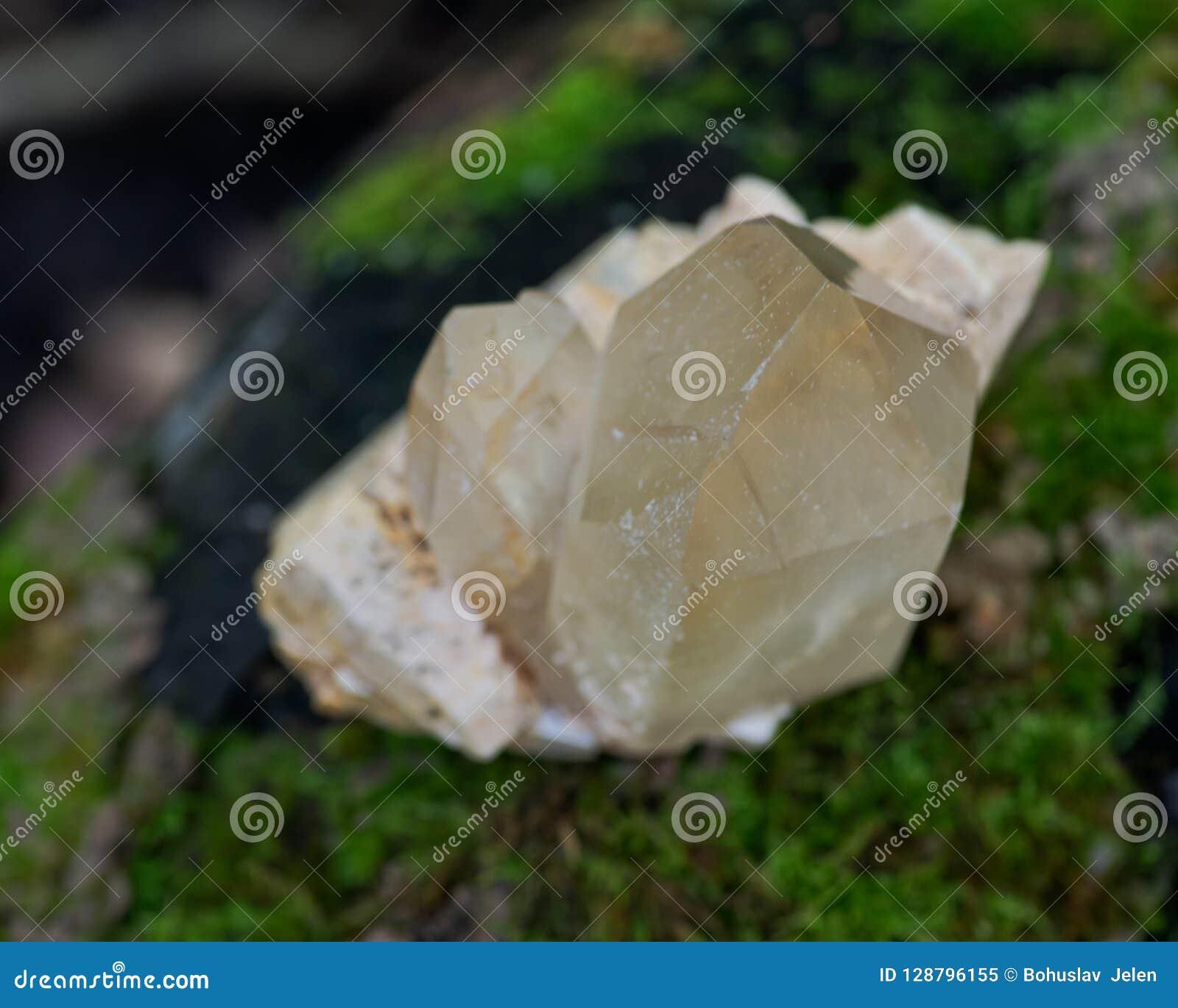 Le point citrin de quartz de cathédrale du Brésil s est niché dans la matrice sur la mousse, le bryophyta et l écorce, rhytidome