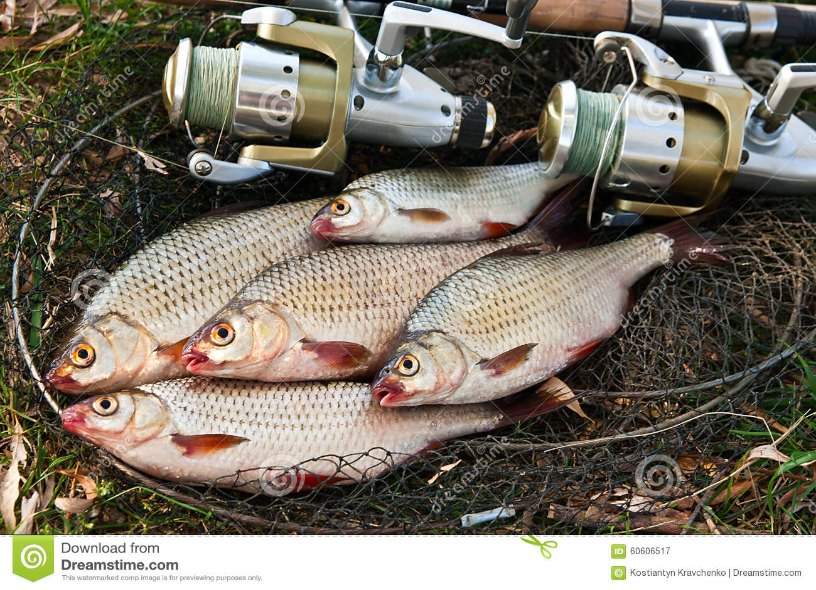 Les marchandises pour la pêche et la chasse du producteur