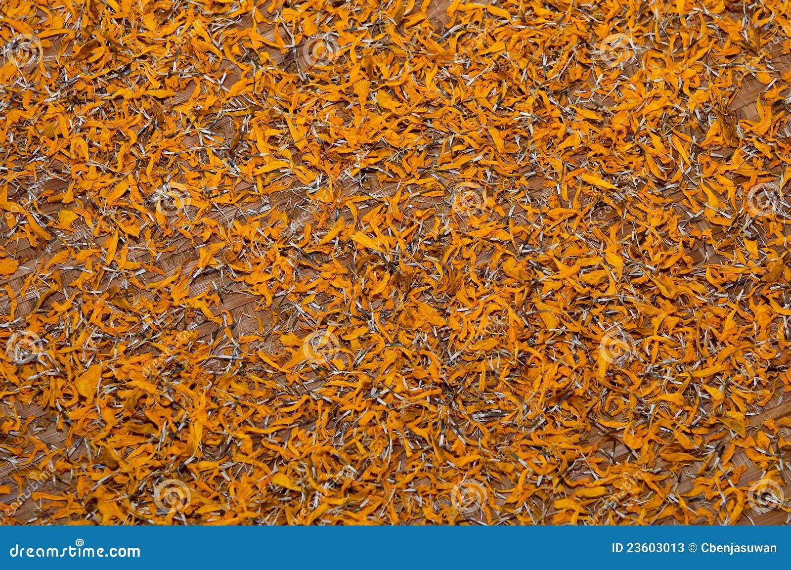 le pollen de la fleur de souci photos stock image 23603013. Black Bedroom Furniture Sets. Home Design Ideas