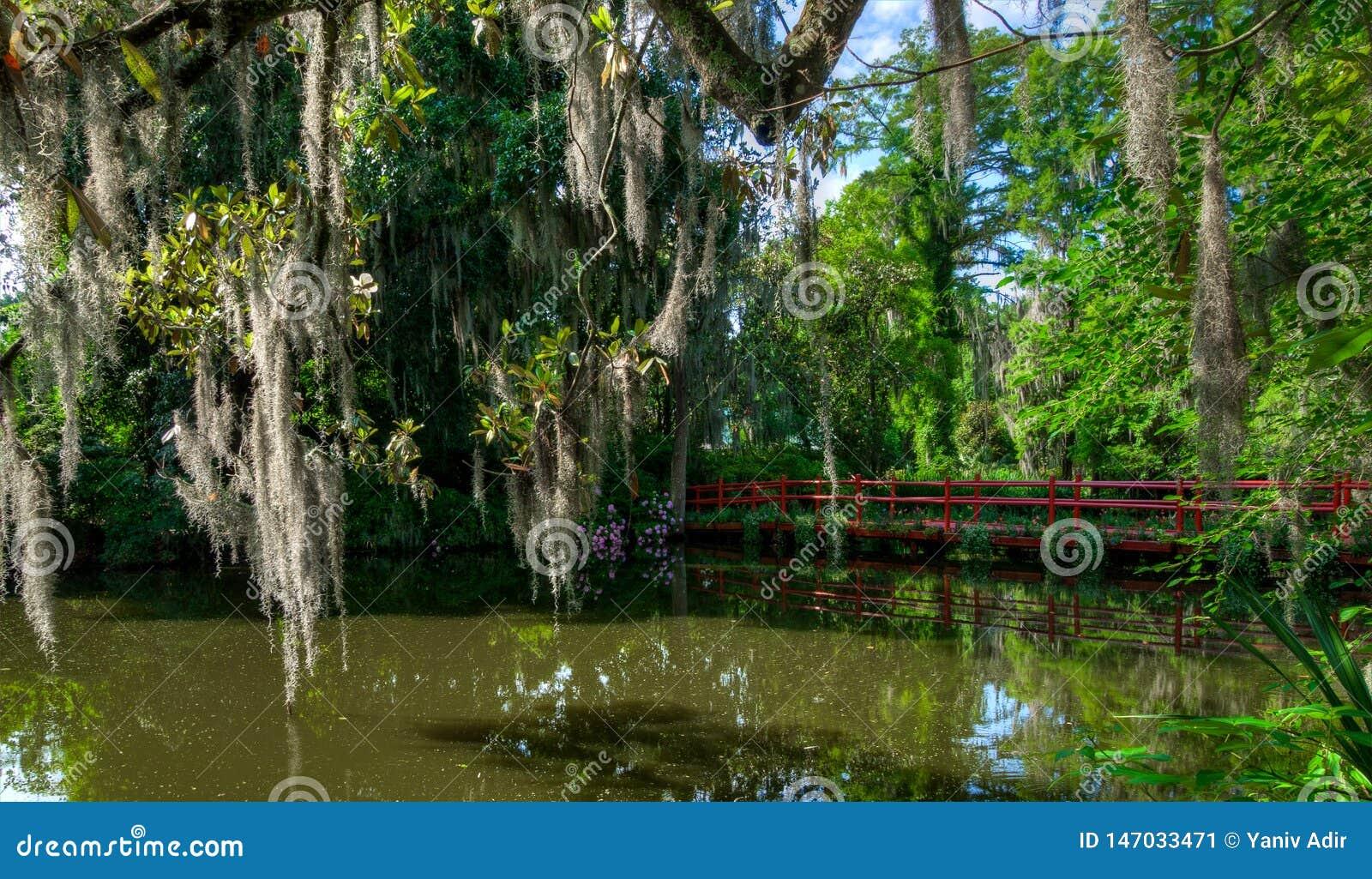 Le pont rouge au-dessus de l eau, avec de la mousse a couvert des arbres Charleston, Sc