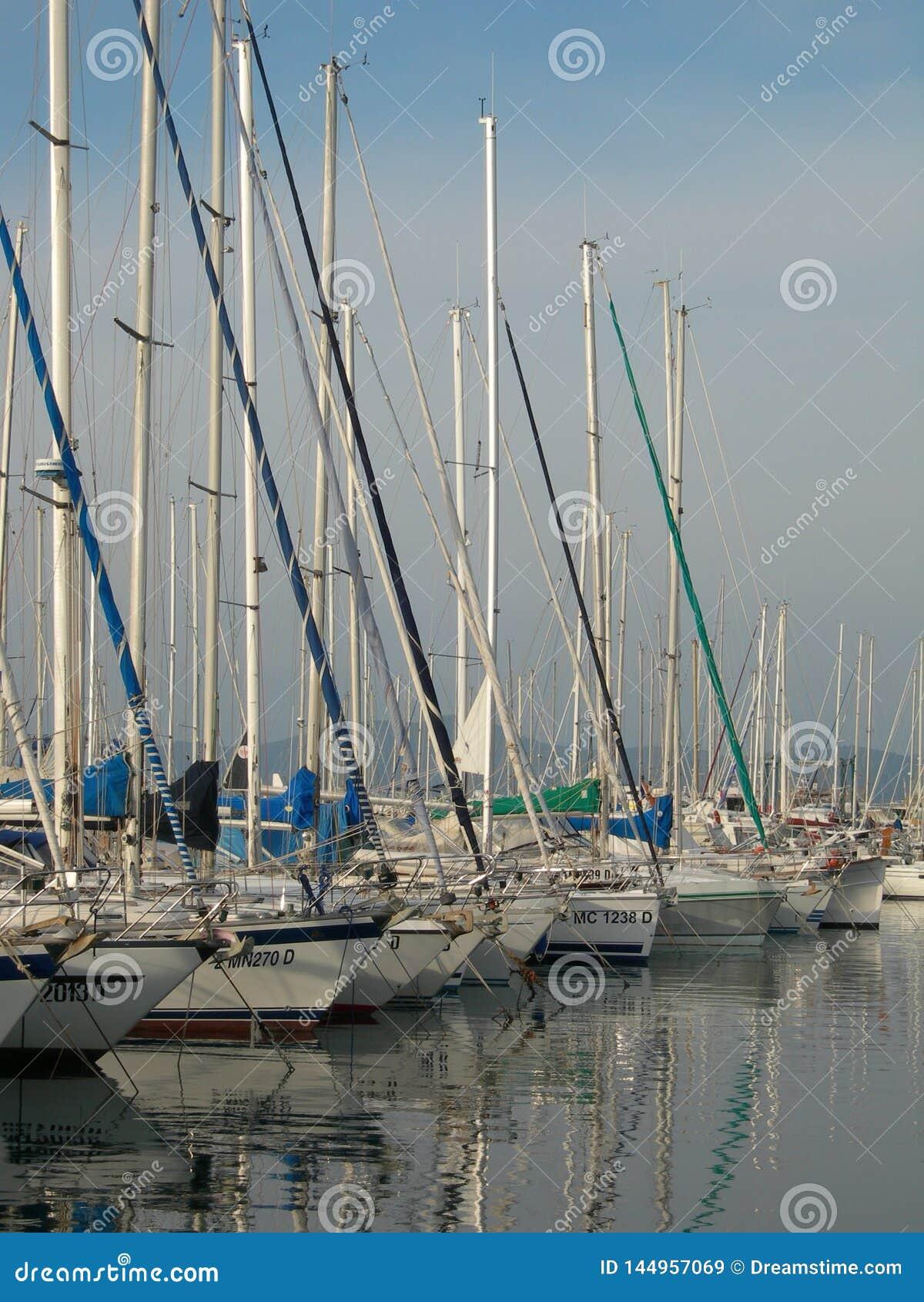 Le port de l aile du nez de Punta