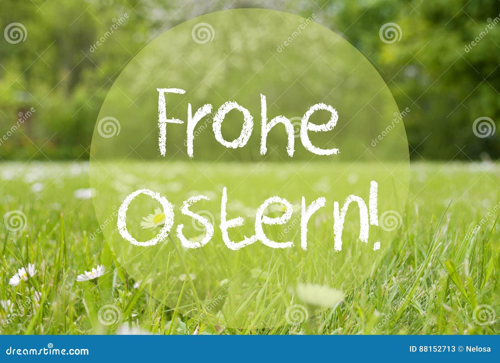 Le pré de Gras, Daisy Flowers, Frohe Ostern signifie Joyeuses Pâques
