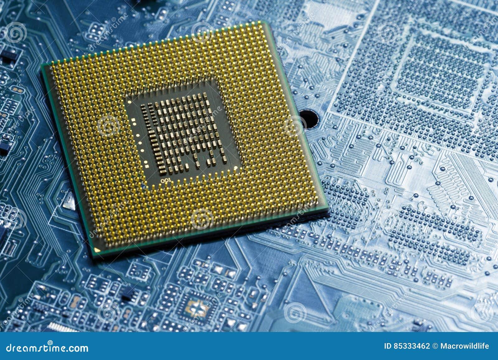 Le processeur sur la carte bleue avec les contacts plaqués or se ferment  Vue inférieure du côté de goupilles