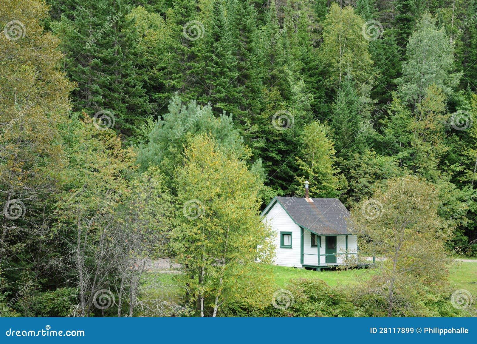 Le qu bec vieille maison dans la for t de matapedia dans for Achat de maison quebec