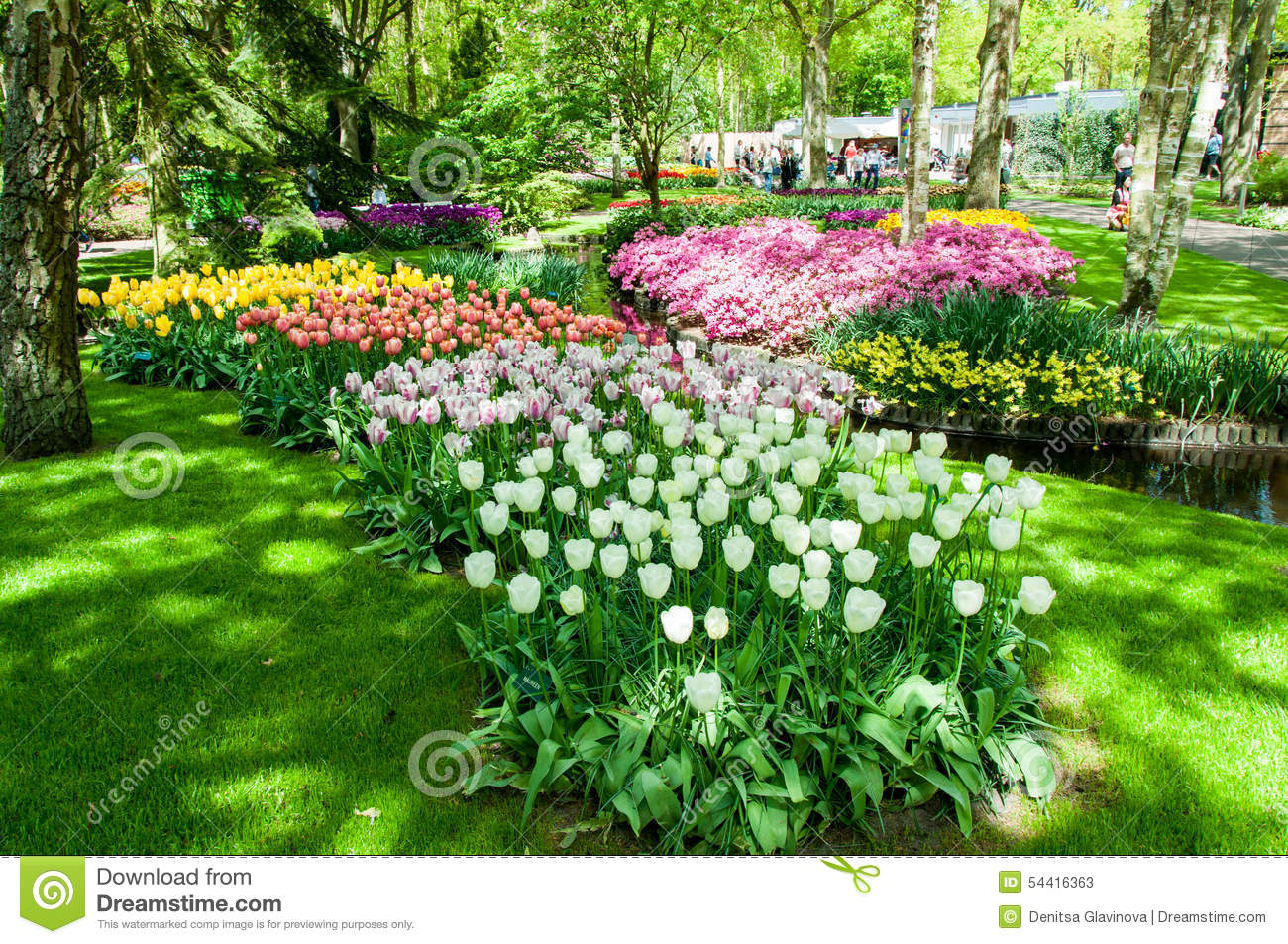 le ressort color fleurit dans le jardin keukenhof pays bas de la hollande photo stock image. Black Bedroom Furniture Sets. Home Design Ideas