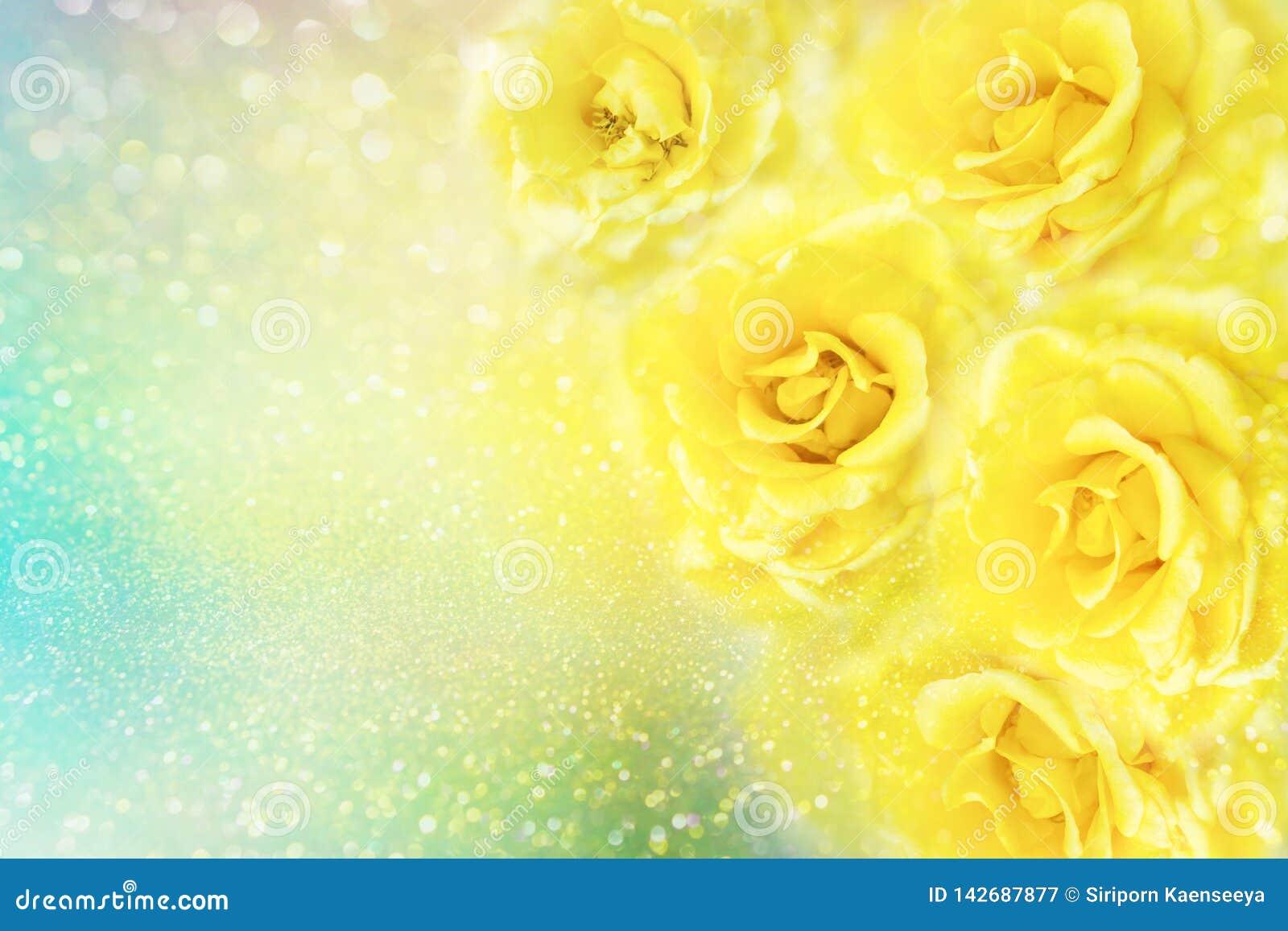 Le rose gialle fioriscono il fondo romanzesco molle con bello scintillio