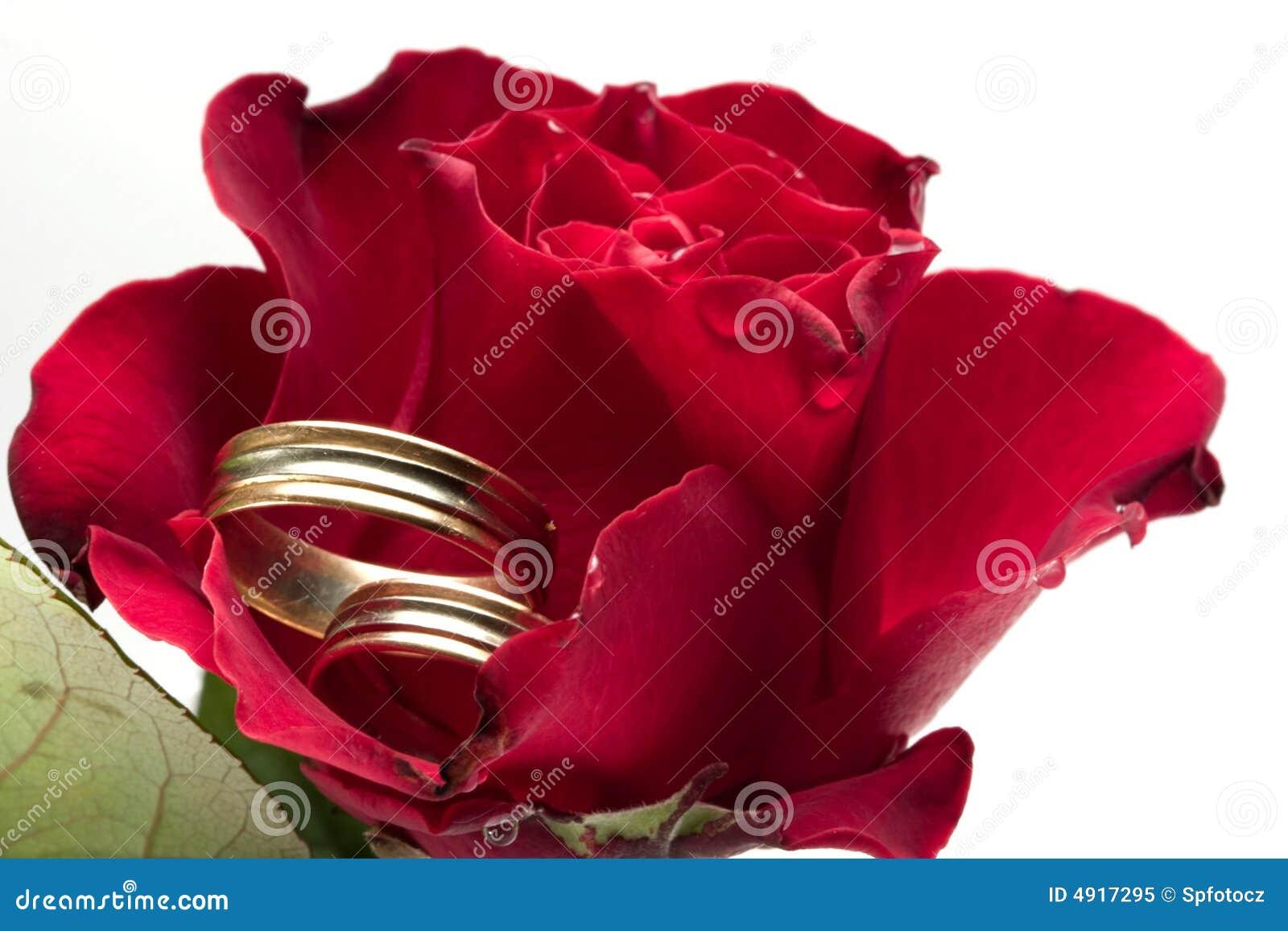 Le rouge a monté - concept de mariage