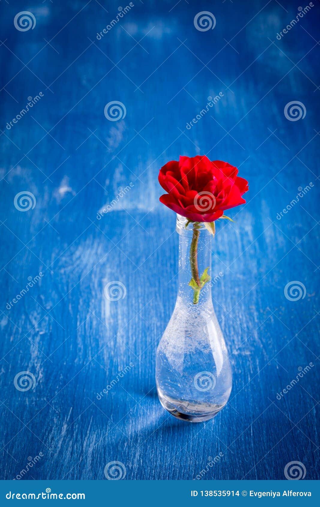 Le rouge a monté dans un vase en verre