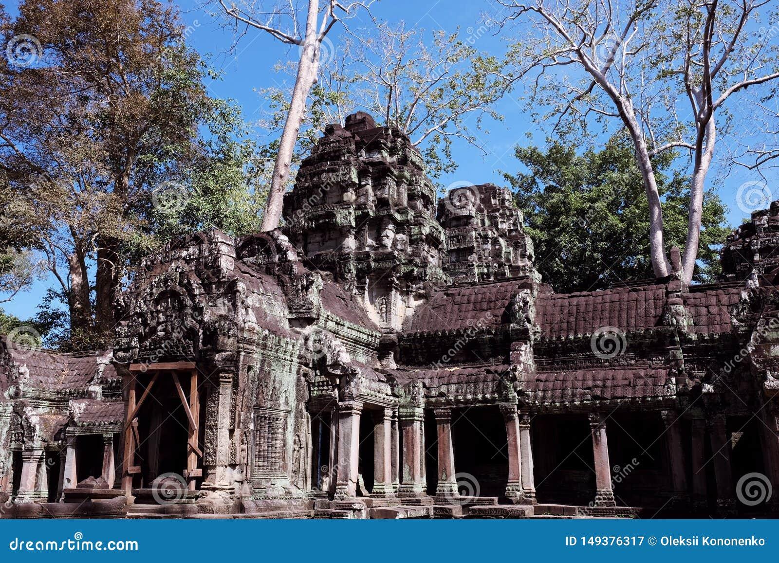 Le rovine del complesso del tempio dei tum Prohm in Cambogia Patrimonio architettonico dell impero khmer Un capolavoro del mondo