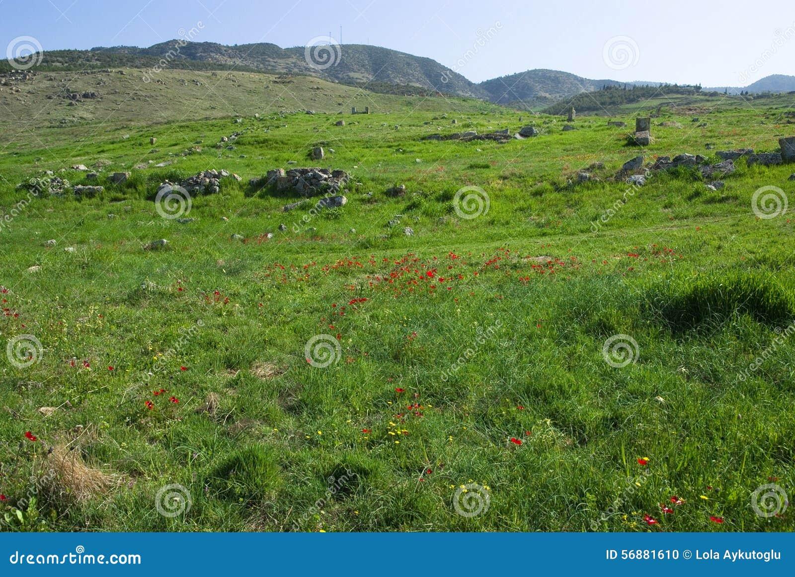 Le rovine di Laodicea una città di Roman Empire in attuale, Turchia, Pamukkale