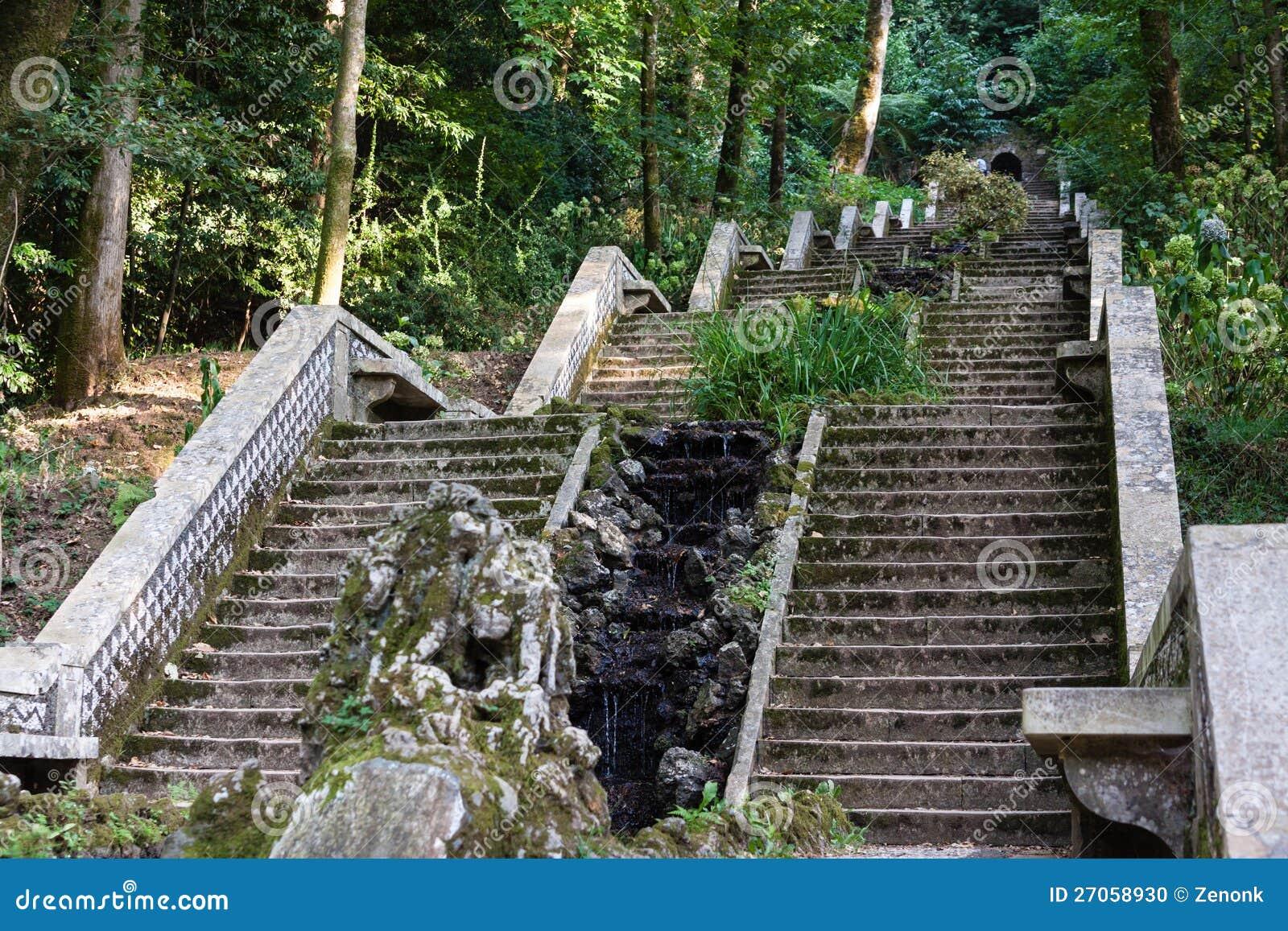 Le scale in giardino di serra fanno bussaco portogallo - Scale in giardino ...