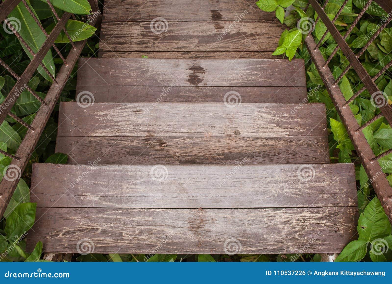 Le scale o il passaggio pedonale di legno vanno giù al giardino all aperto circondato con gli alberi verdi