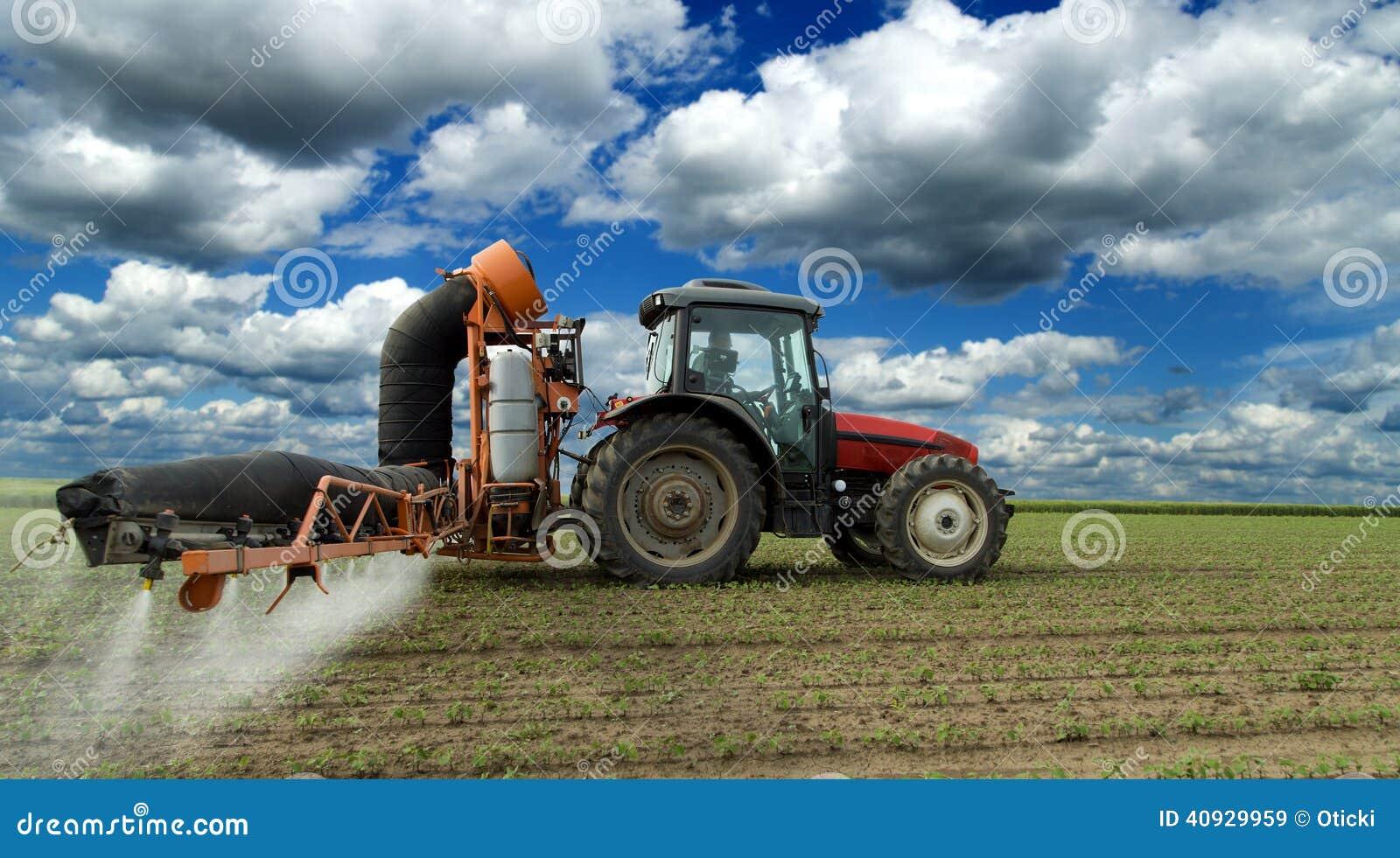 Le soja de pulvérisation de tracteur cultive le champ
