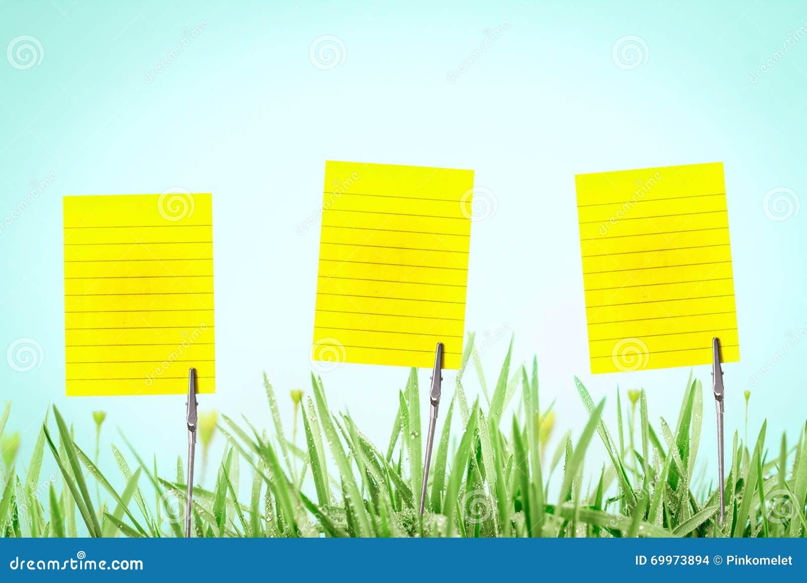 Le Support Argente De Carte Visite Professionnelle Sur L Herbe Verte Fraiche Avec