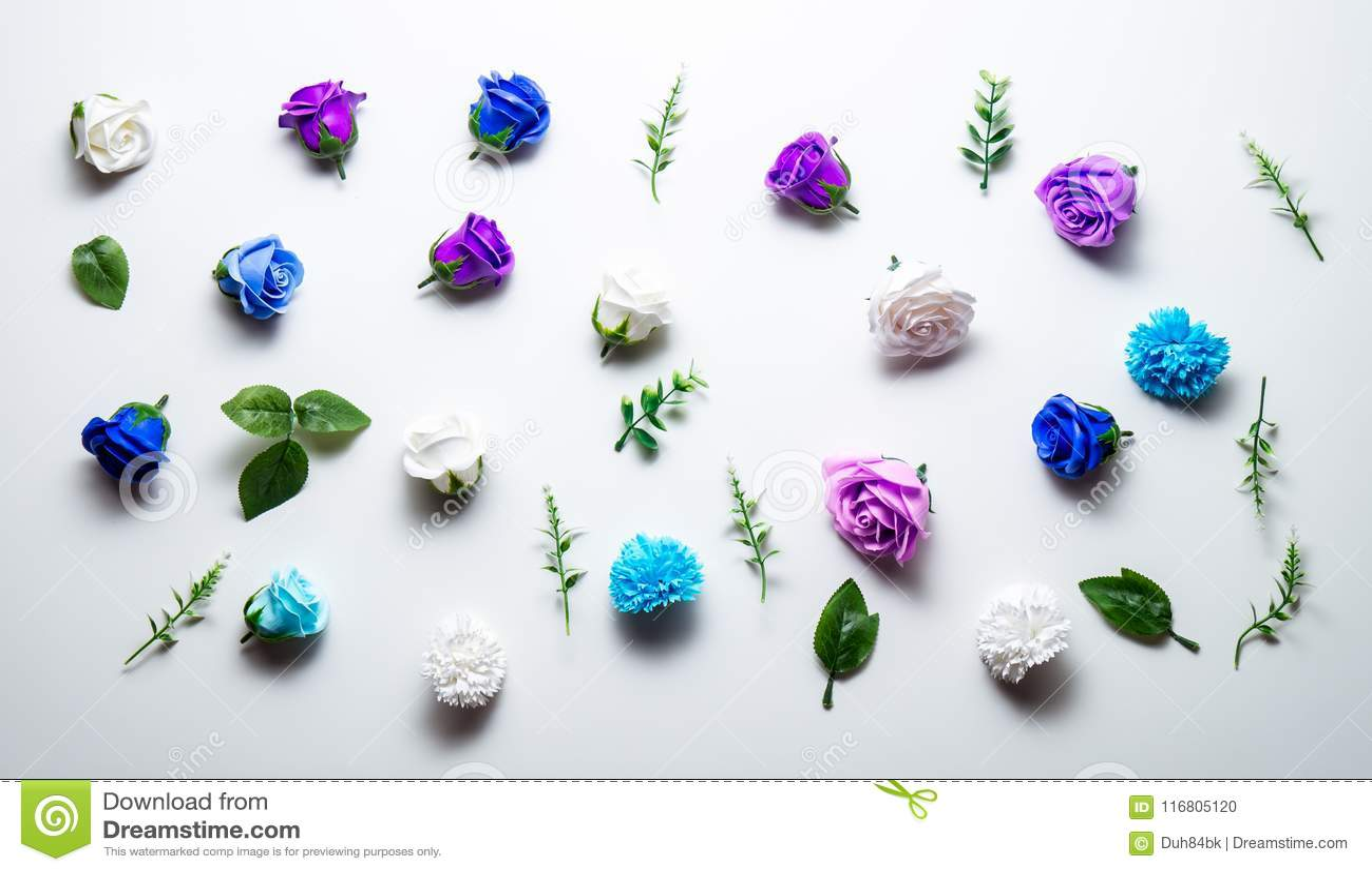 Le teste blu e porpora dei fiori rosa hanno sparso su una tavola bianca Disposizione di Flatt
