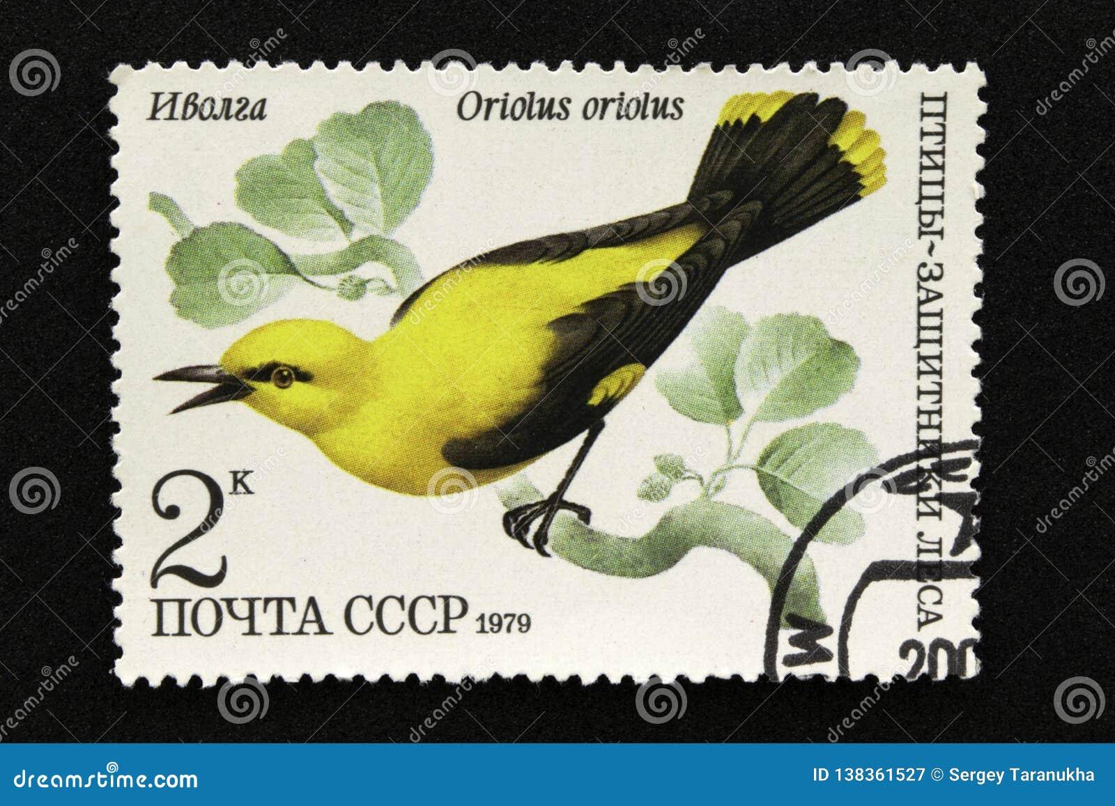 Le timbre-poste de l URSS, série - oiseaux - démonstrateurs de la forêt, 1979