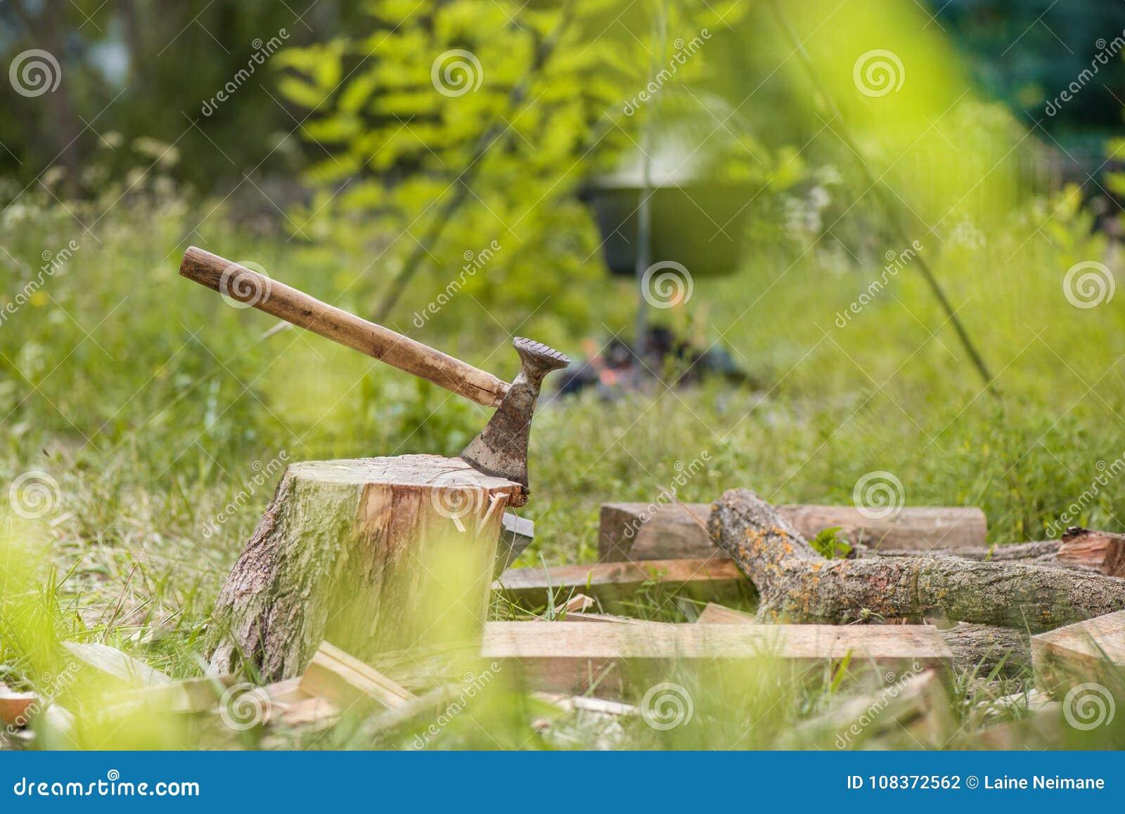 Le tir déprimé de la hache a coupé dans un tronçon sur le fond vert de campagne et de forêt