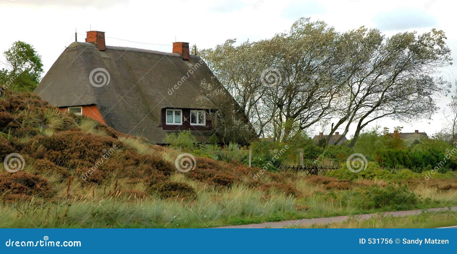 Le toit a couvert la maison de chaume