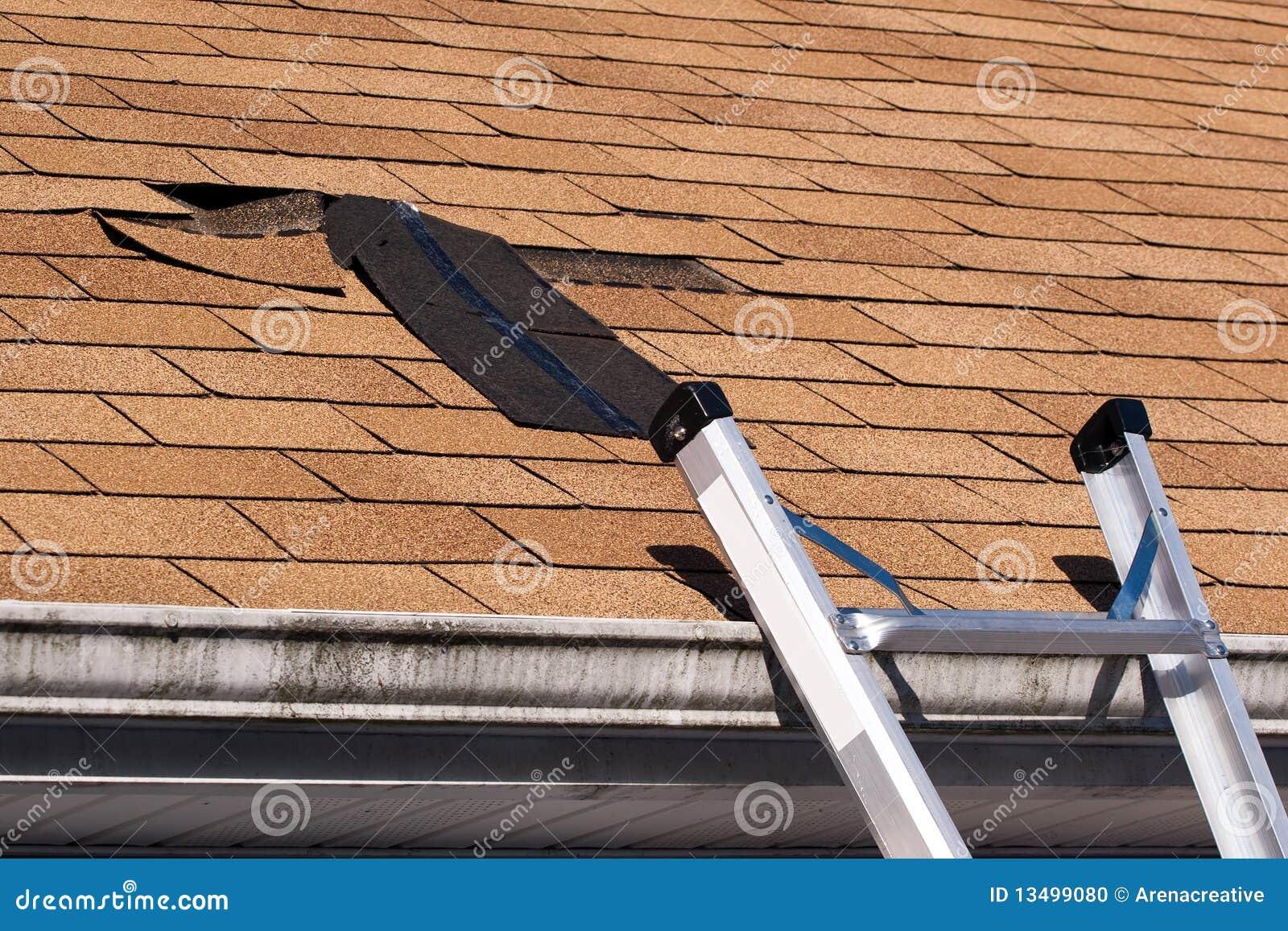 Le toit endommagé essente la réparation