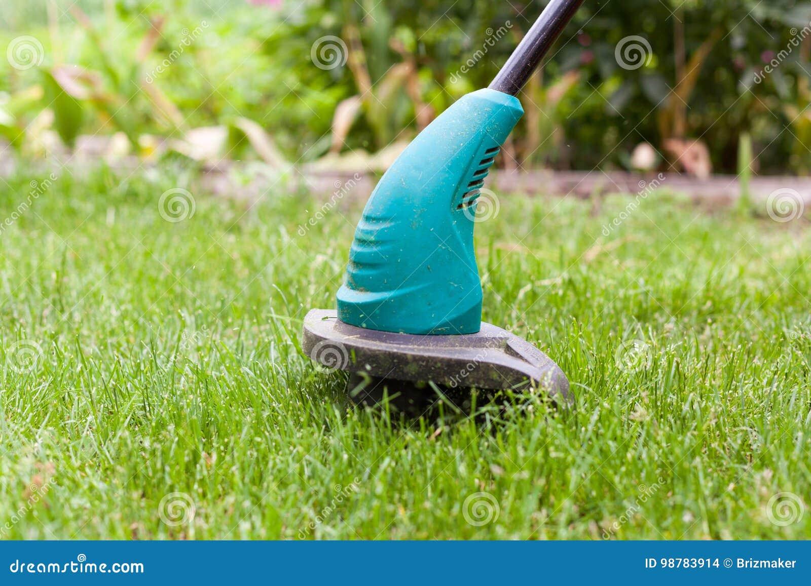 Le trimmer de pelouse d essence fauche l herbe verte juteuse sur une pelouse un jour ensoleillé d été Équipement de jardin