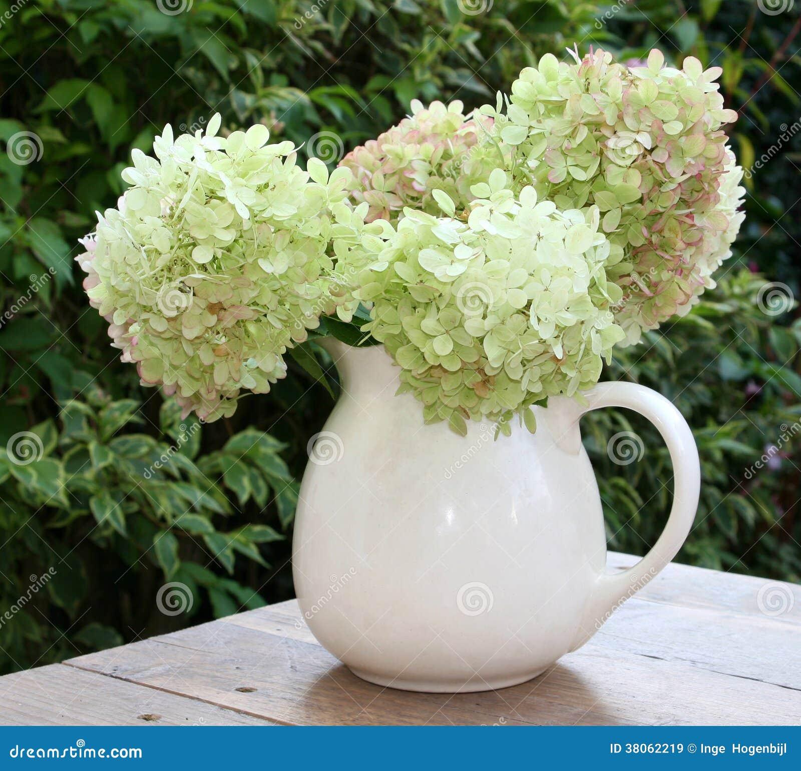 le vase avec un bouquet de hortensia frais fleurit du jardin image stock image 38062219. Black Bedroom Furniture Sets. Home Design Ideas