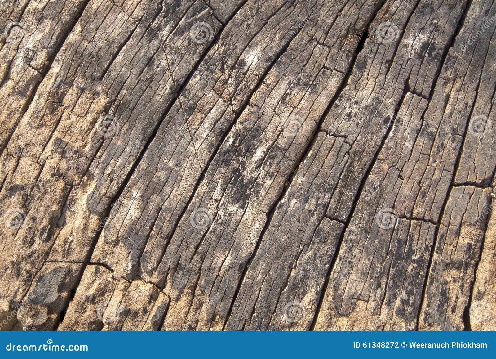 Le vieux bois donne au fond une consistance rugueuse