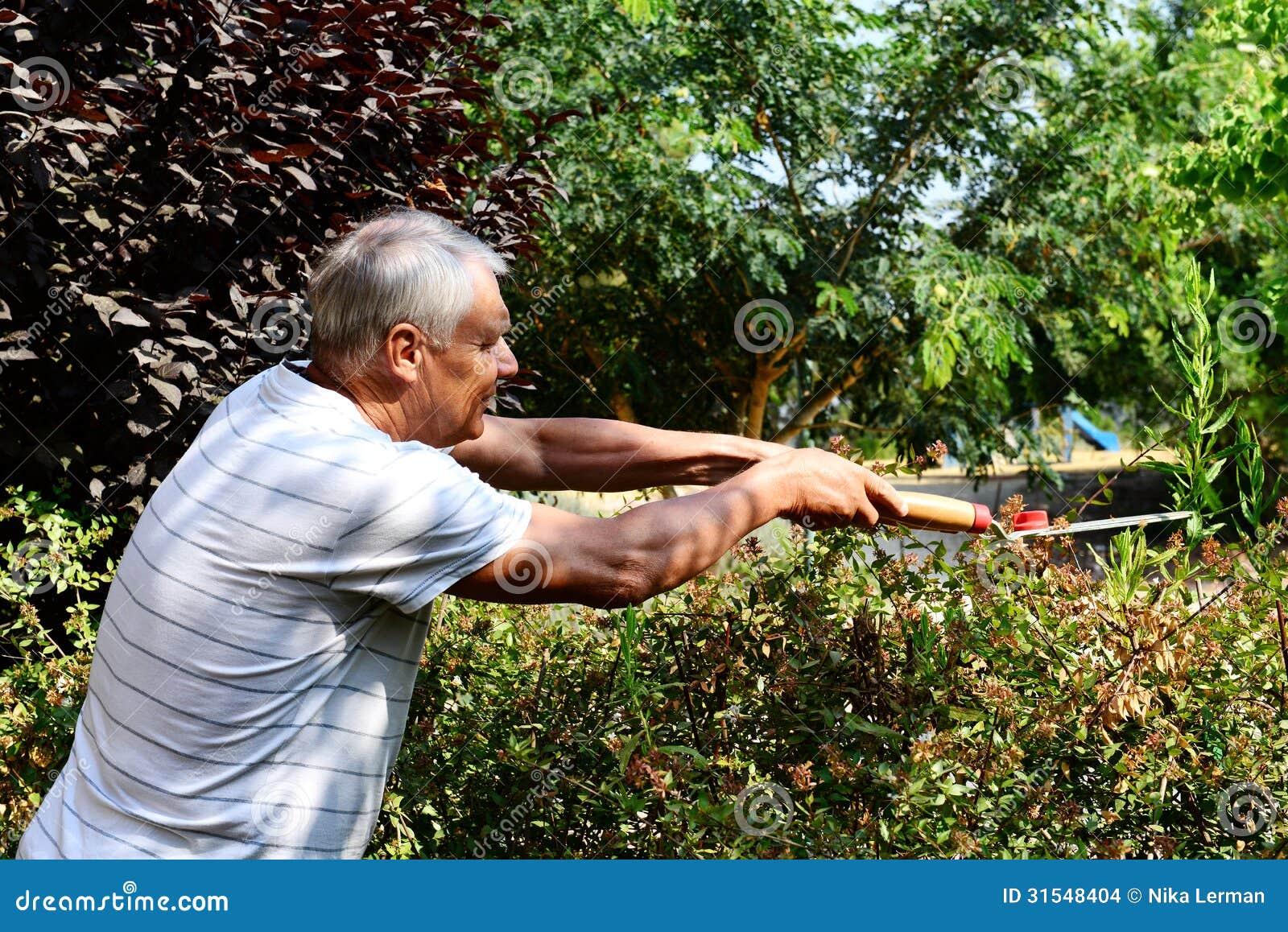 Le vieux jardinier travaille dans le jardin images stock for Dans le jardin