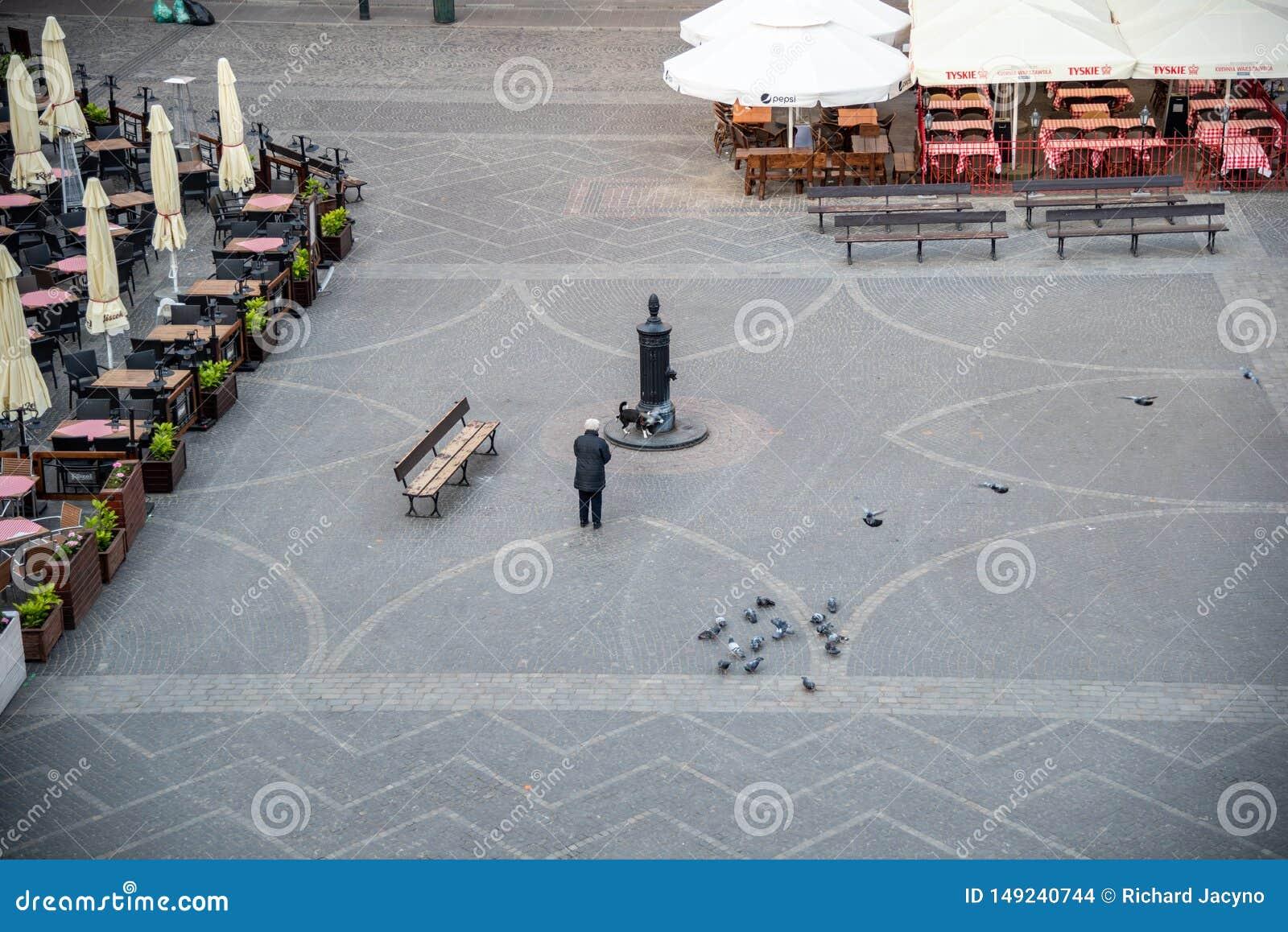 Le vieux regard fixe Miasto de la ville de Varsovie est le centre historique de Varsovie
