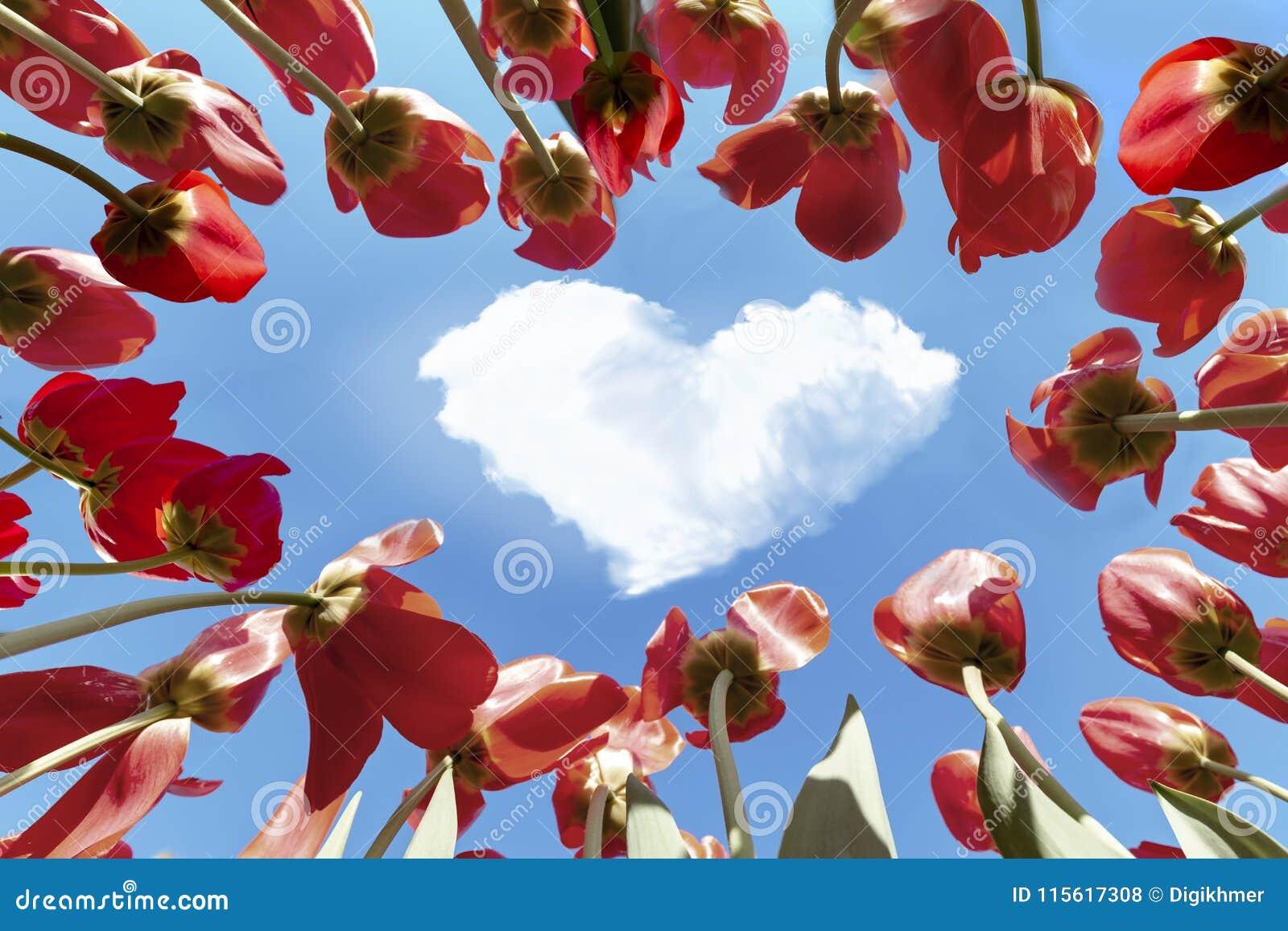 Le vrai amour est dans le ciel