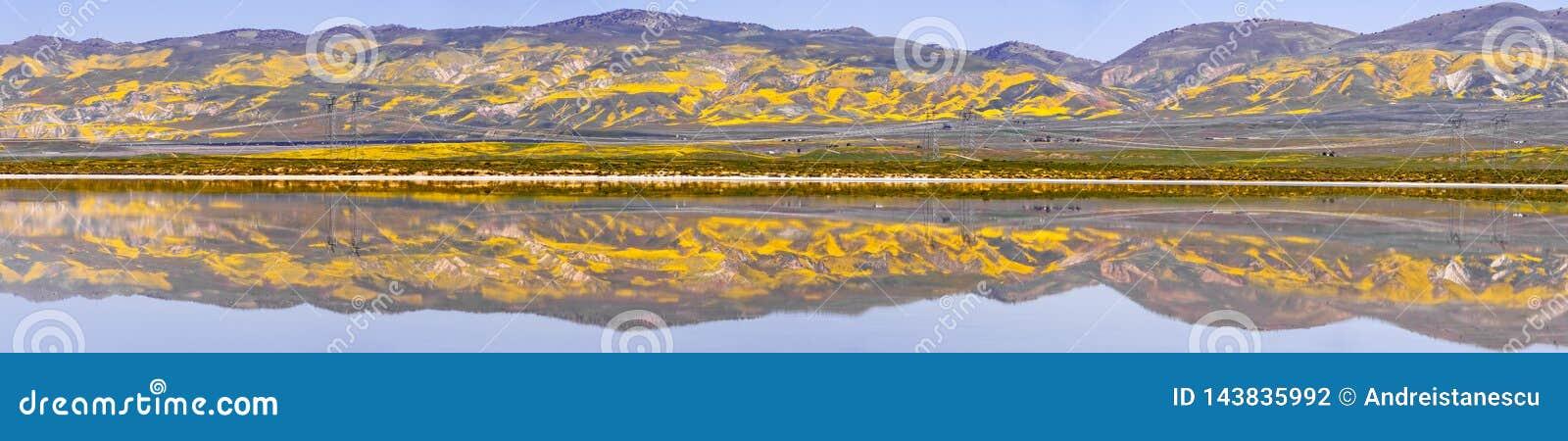Le Wildflower a couvert des montagnes reflétées dans les eaux provisoires monument national de plaine soda de lac, Carrizo, la Ca