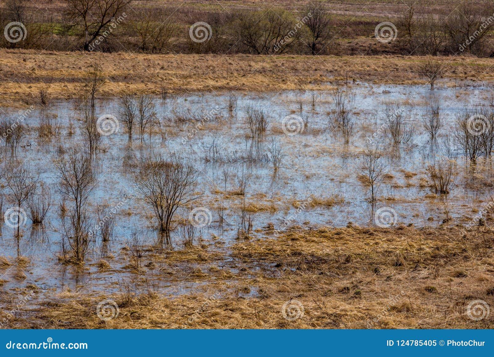 Le zone inondable inondé avec de l eau