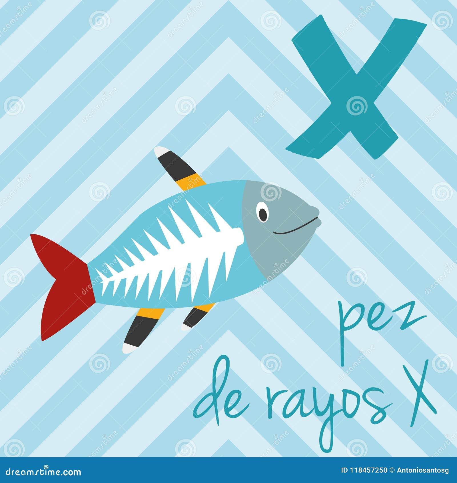 Le zoo mignon de bande dessinée a illustré l alphabet avec les animaux drôles Alphabet espagnol : X pour Pez de Rayos X