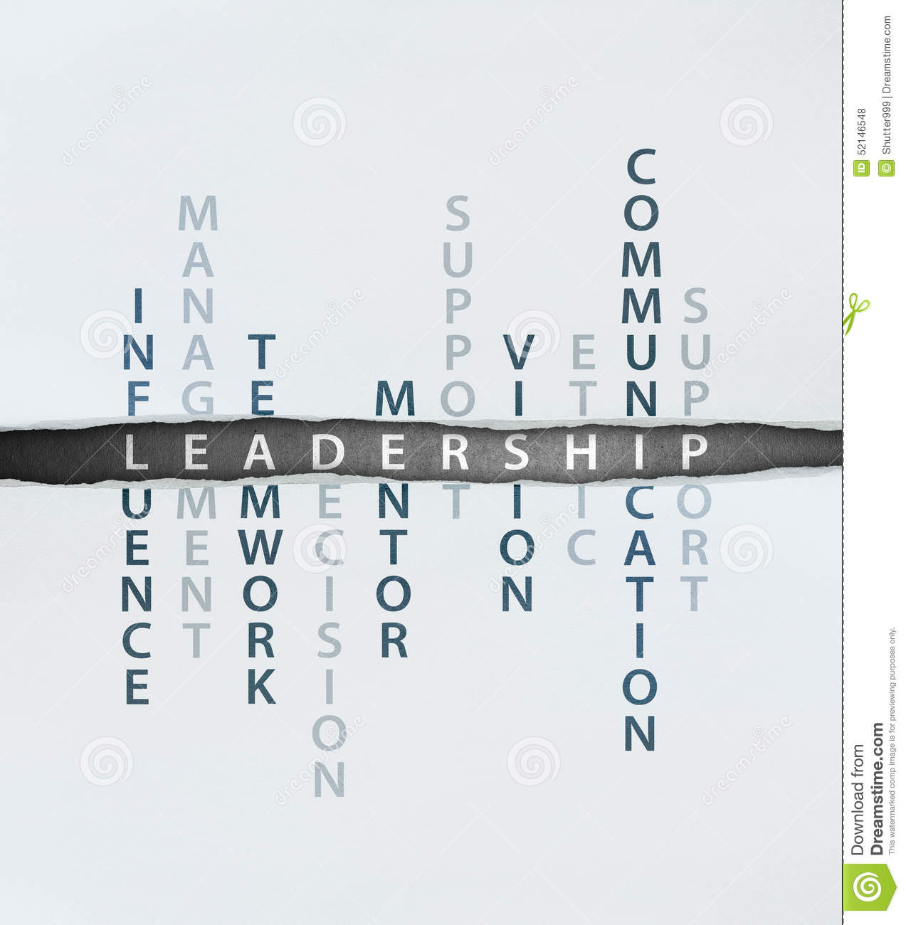 Leadership & Different Types of Influence Processes