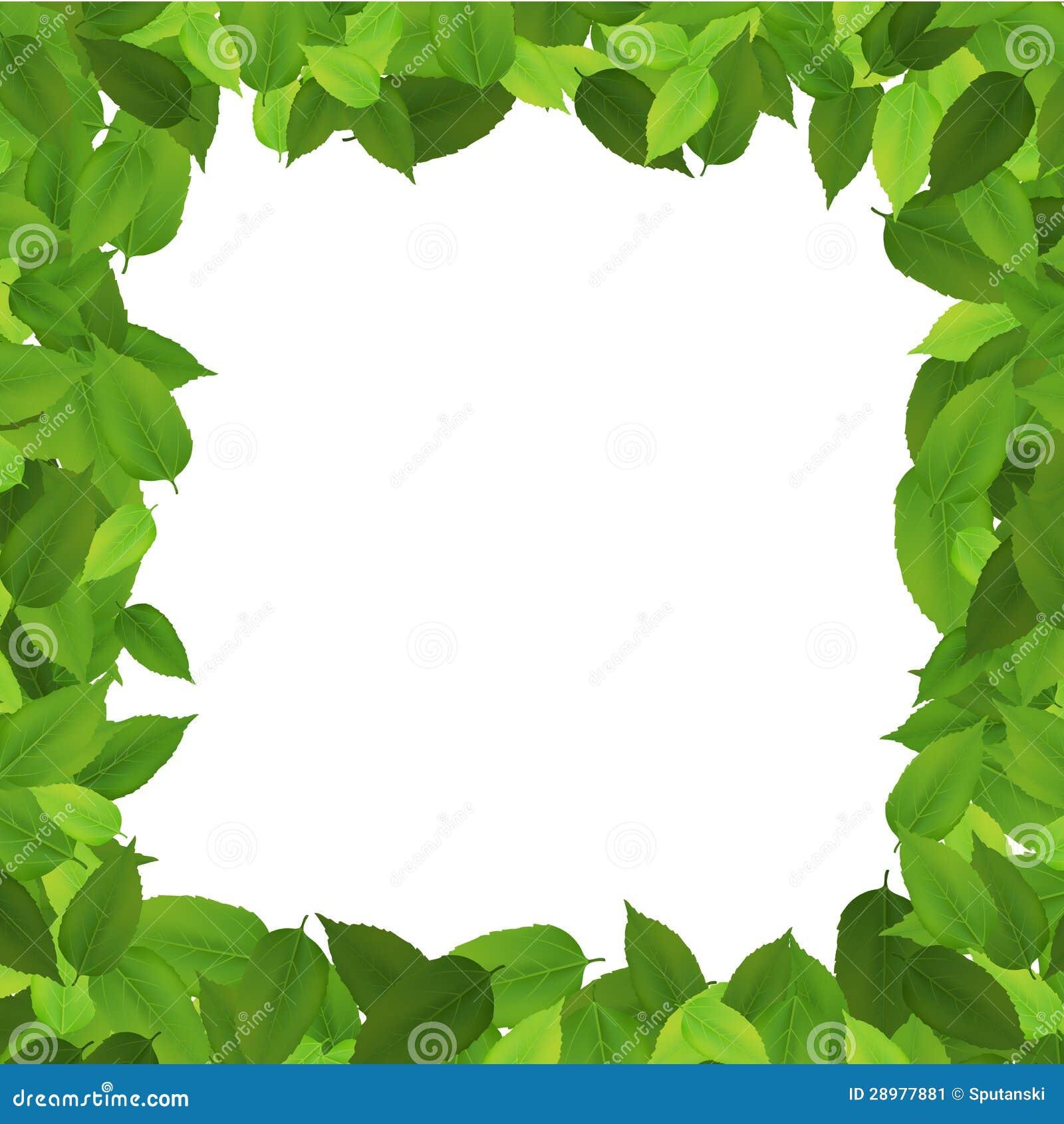 Leaf Border Stock Image - Image: 28977881
