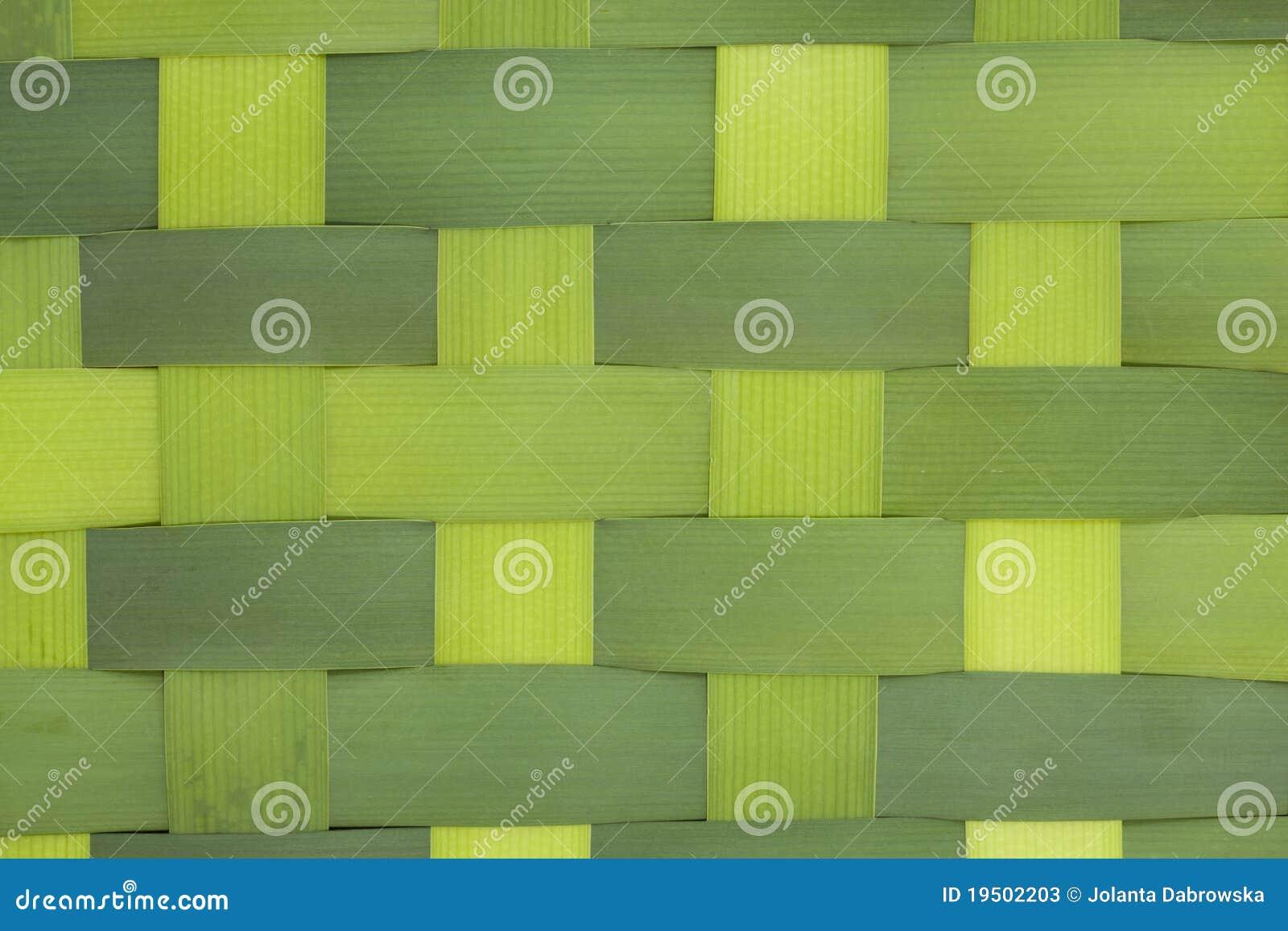 Leaf cattails