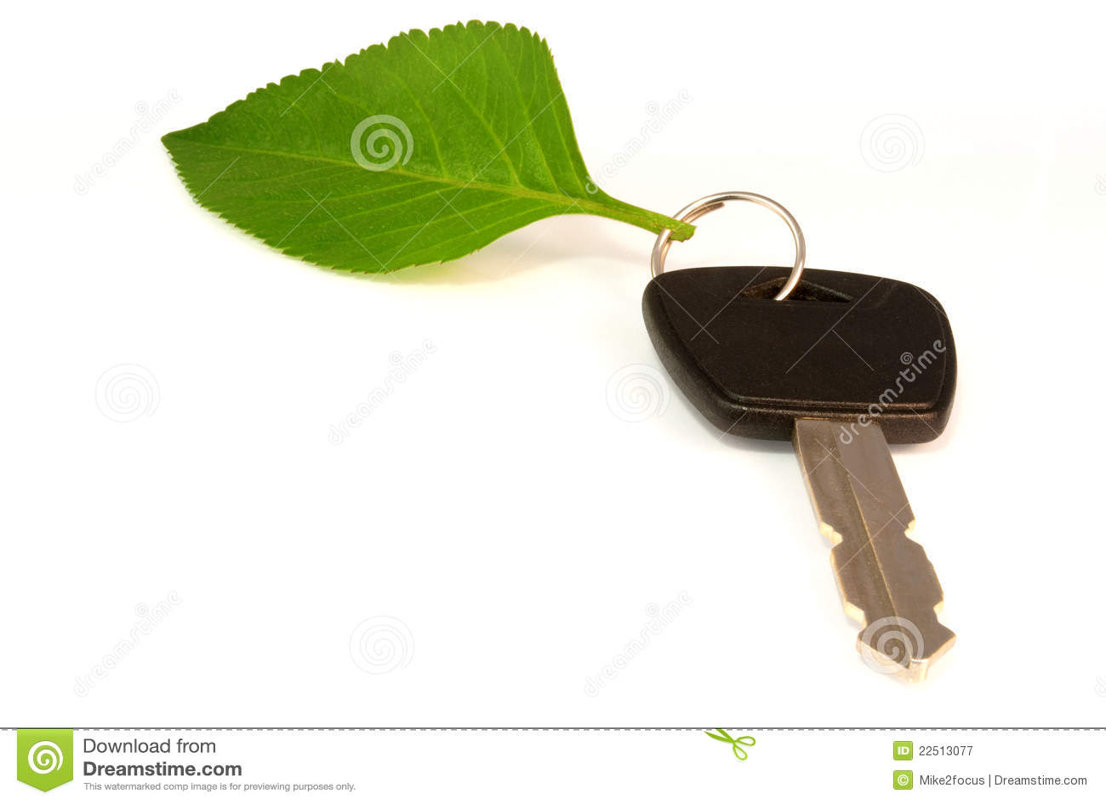 Leaf on key ring of eco friendly car