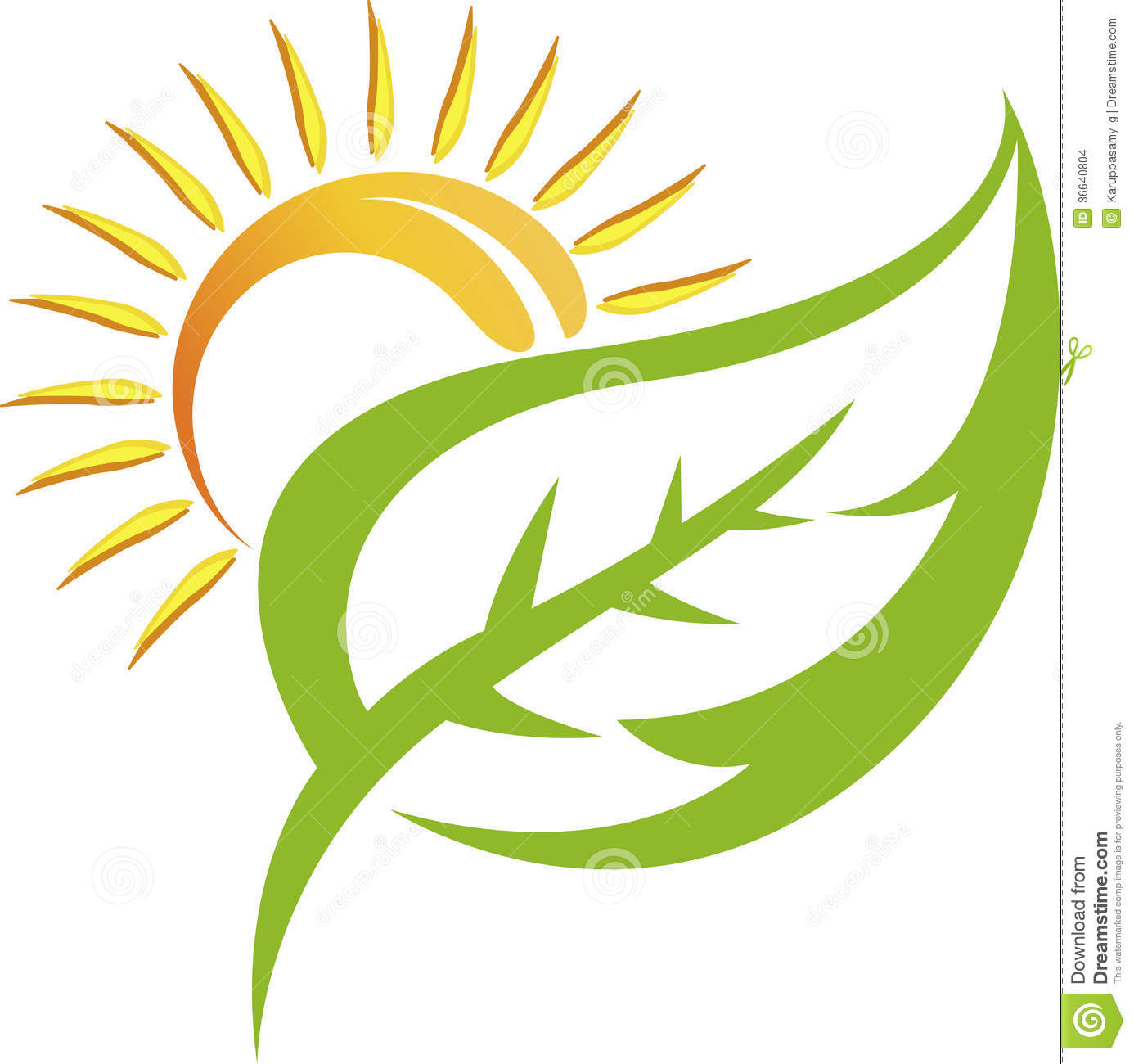 Illustration art of a leaf logo with isolated background.