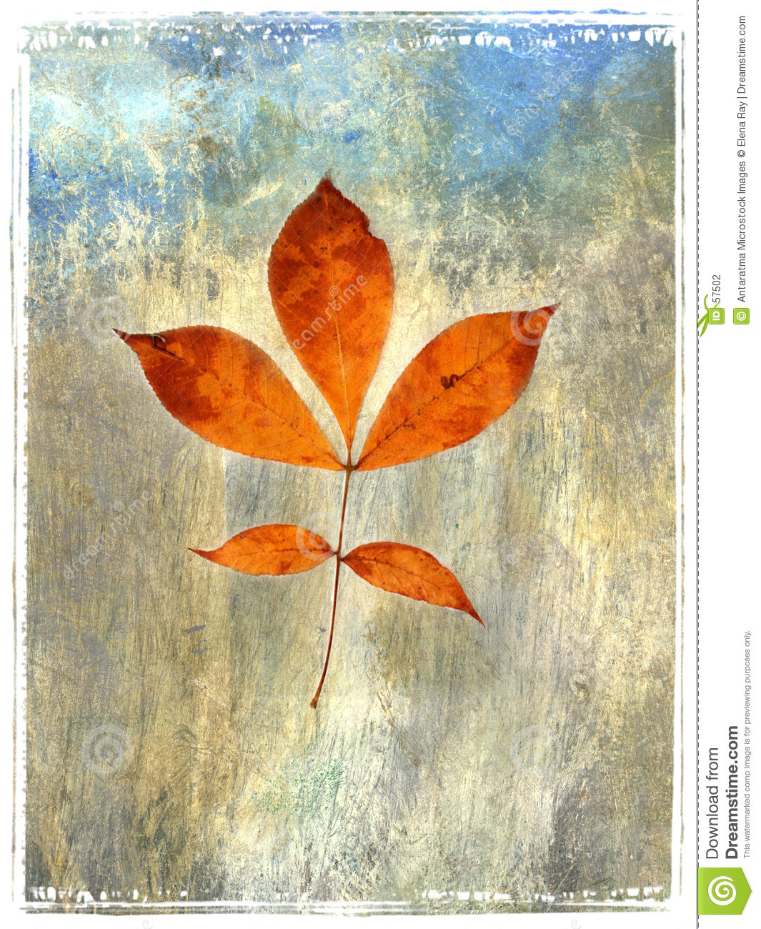 How To Paint A Watercolor Leaf — Crafthubs