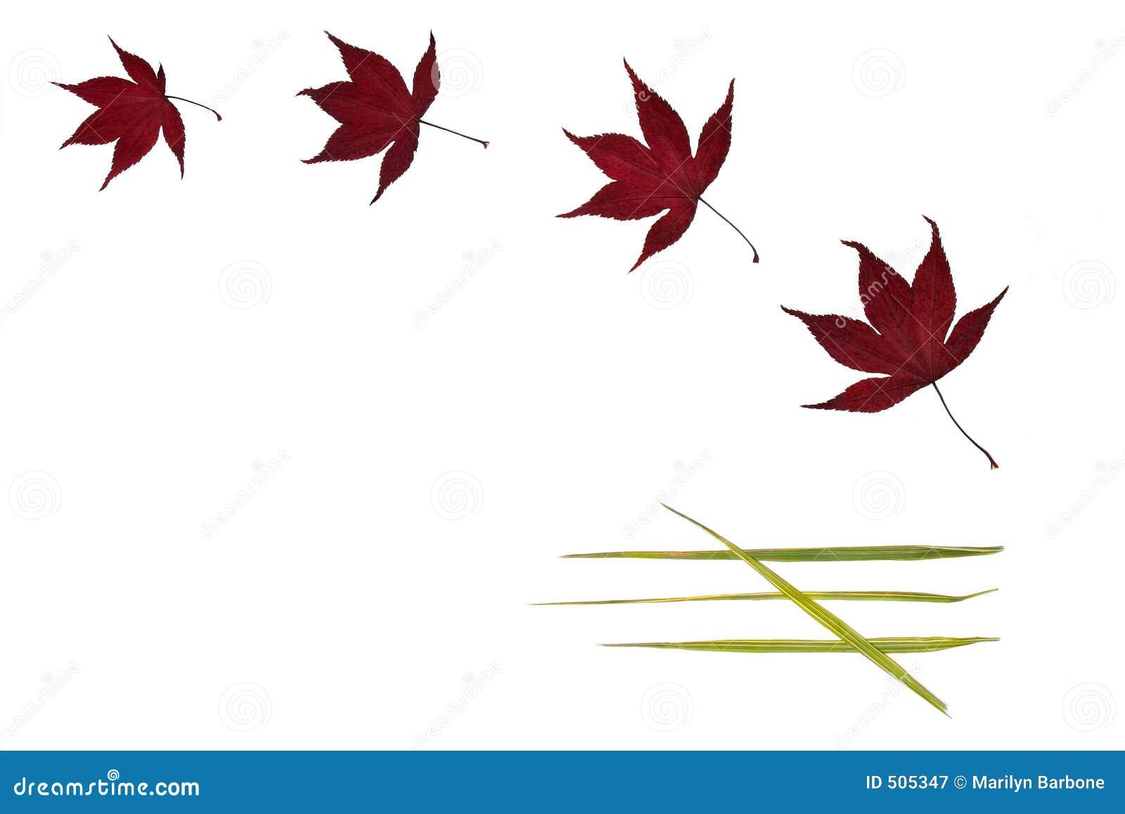 Leafenkelhet