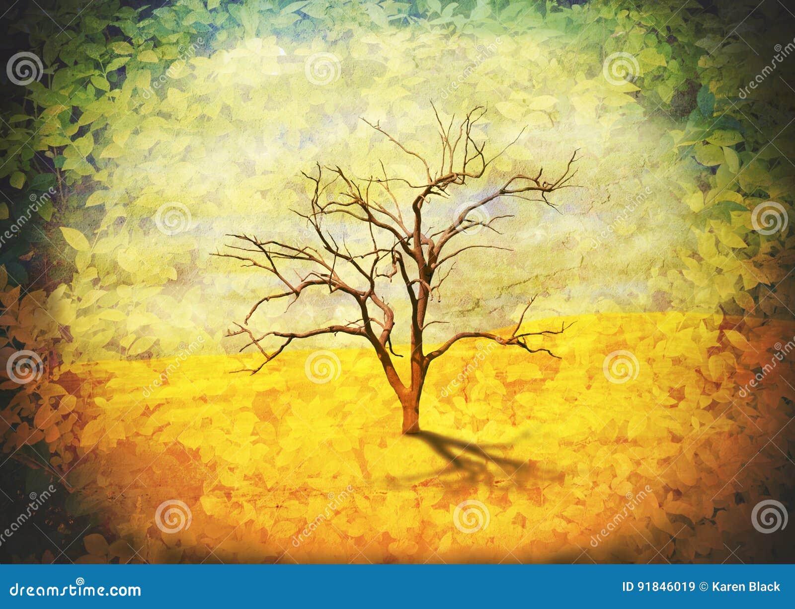 Leafless tree in desert landscape frame by leaves