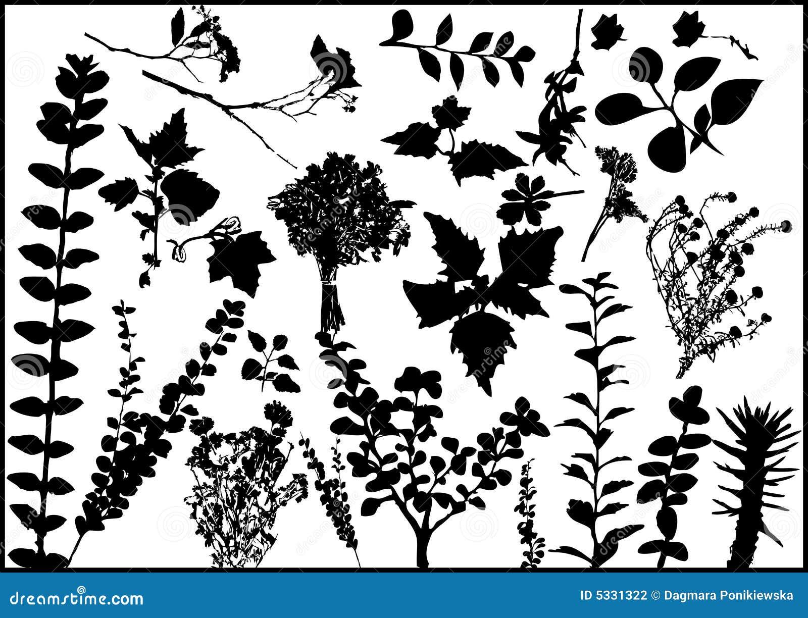 Leafvektor