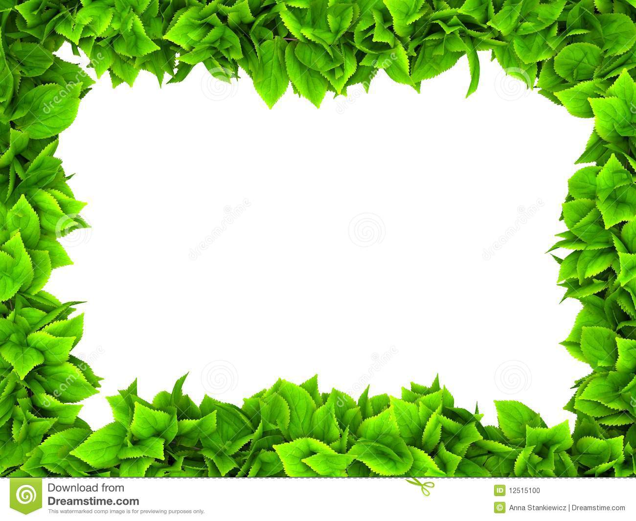 leafy green border stock illustration illustration of. Black Bedroom Furniture Sets. Home Design Ideas