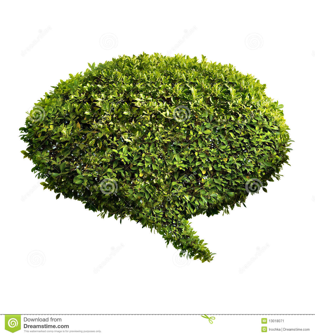 Leafy green bush in shape of communication speech bubble, isolated on ...