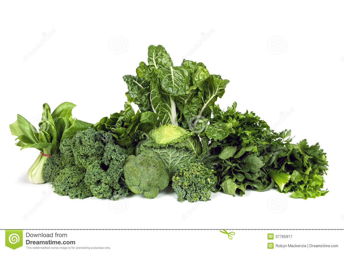 Leafy Green Vegetables Isolated Stock Image - Image of ...